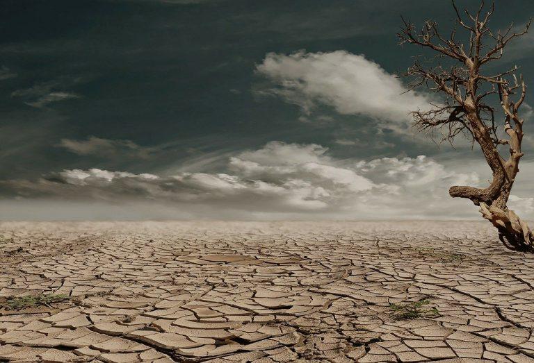 Laboratorio: i cambiamenti climatici