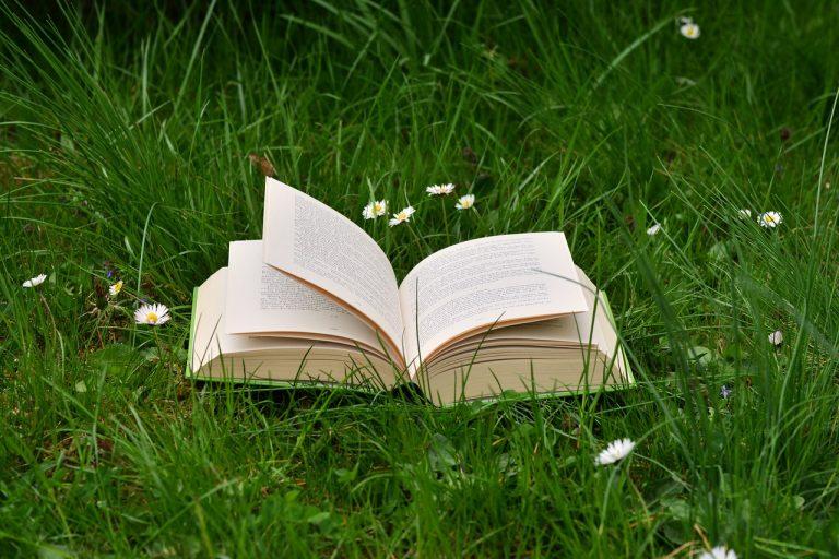 Consigli di lettura\3