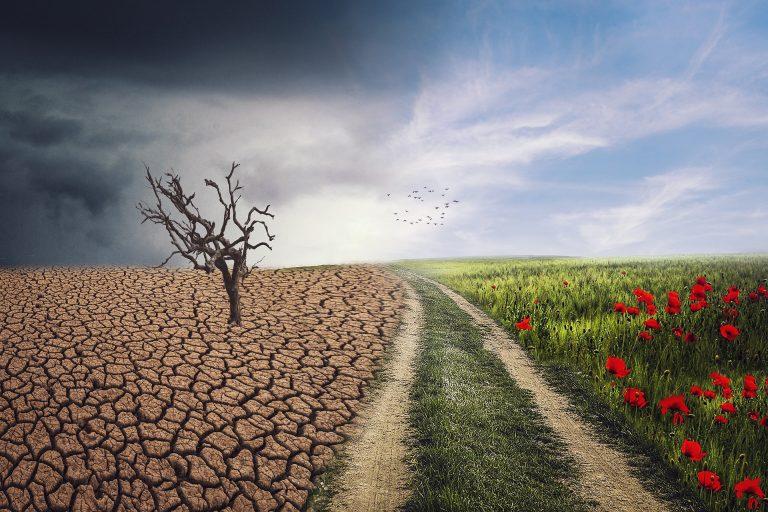 Earth Day 2020, non dimentichiamoci del clima: Italia a rischio siccità