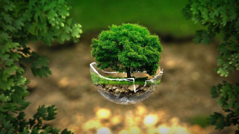 #Nientecomeprima / L'ambiente