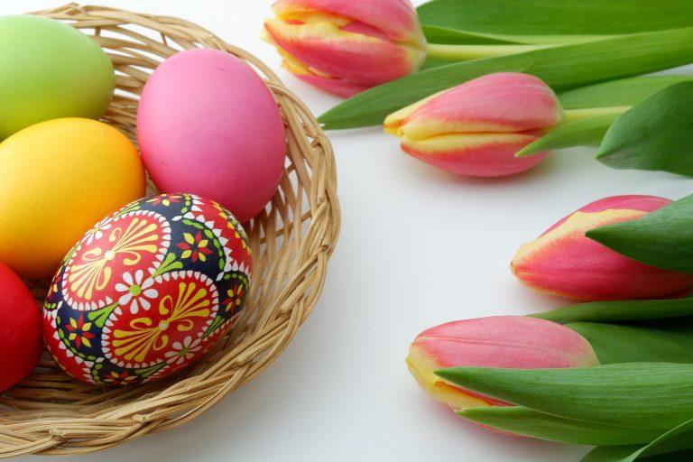 L'educazione ambientale pret-à-porter: idee di Pasqua