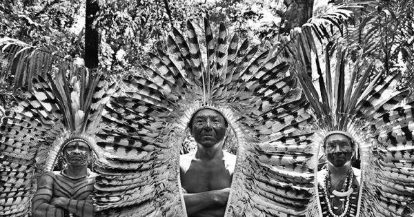 Amazzonia: proteggiamo gli indigeni dal Covid, firmiamo l'appello di Salgado