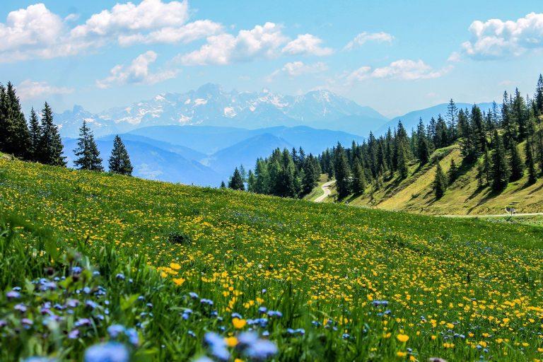 Il turismo montano: da Nevediversa fino al turismo di prossimità post-Coronavirus