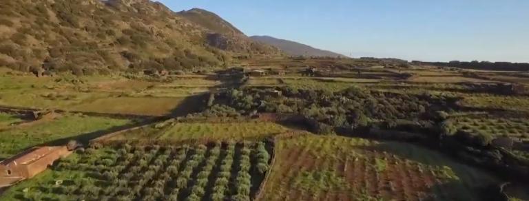 """""""Giardini sul mare"""", rotta verso Pantelleria"""