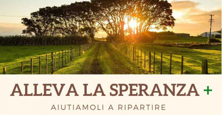 Alleva la speranza+, sosteniamo la ripartenza del Centro Italia